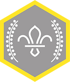Chief Scout Silver Award.png