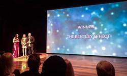 Winner - The Bentley Effect