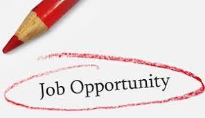 Employment & Volunteer Opportunities with Life Saving Victoria!