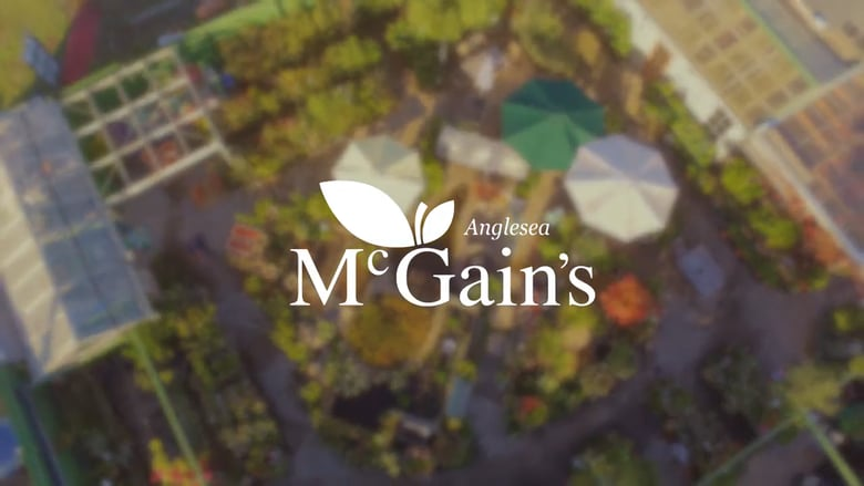 McGains
