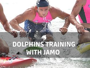 Spring - Summer Dolphins training