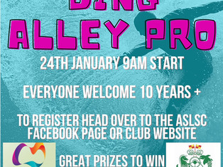 Ding Alley Pro