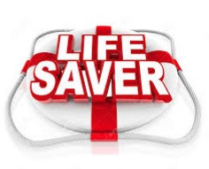 Champion Junior Lifesaver Development Day