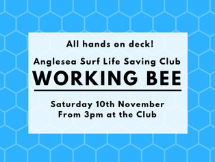 Working Bee - Saturday 10th November