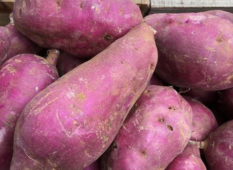 KOCHAB Organic Green Market 11/25