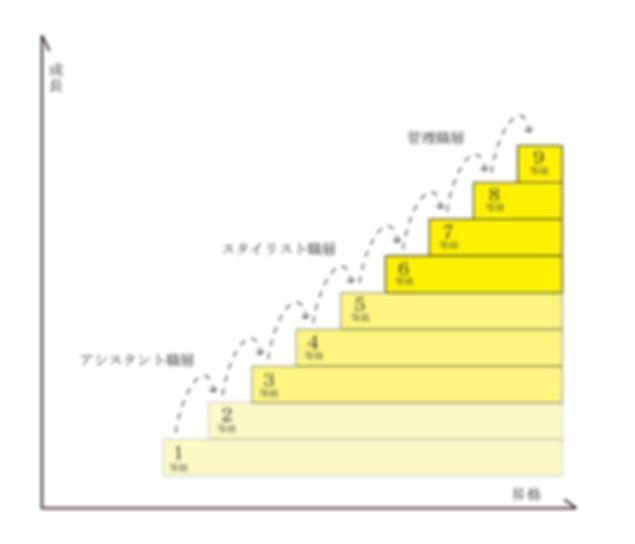給与制度スッテップアップ図.jpg