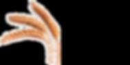 Logo trad trans.png