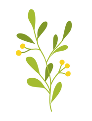 Plants-7.png