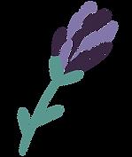 Plants-1-again.png