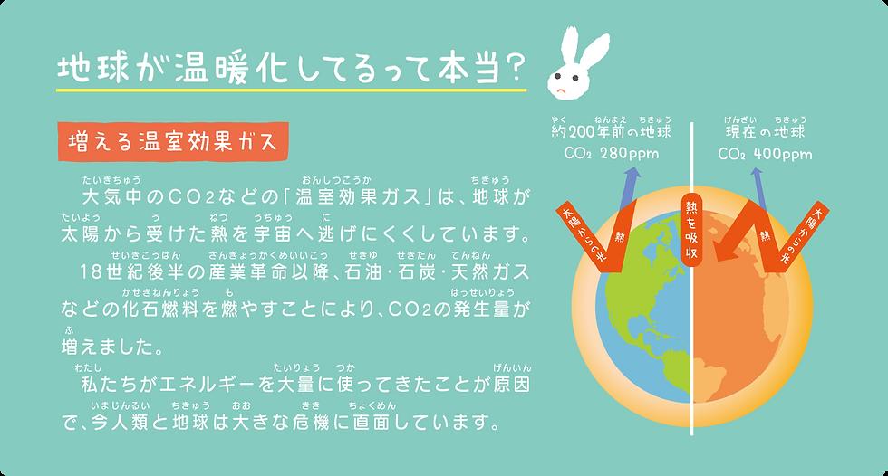 ecof_zero_4.png