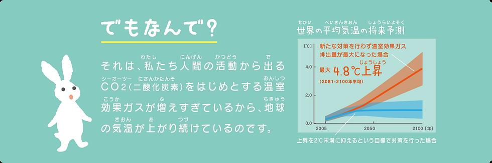 ecof_zero_3.png