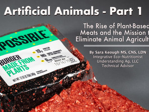 The Rise of Plant-Based Meats