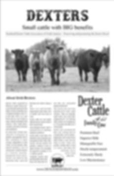 newspaper front for website.JPG