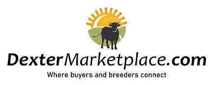 dextermarketplace logo with tag.jpg