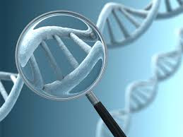 "Genetic Testing - What it ""is"" and what it ""is not"""