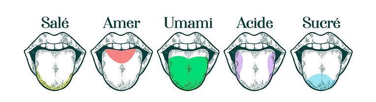 UMAMI.jpg