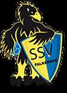 SSV_Logo_footer.png