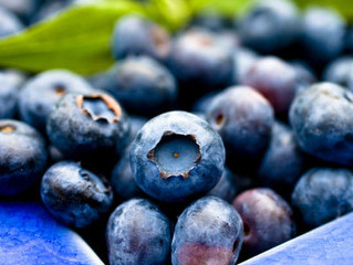 The health benefit of blueberries.