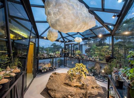 「酉 succulent & artwork」曾浤澤 ──在多肉天地裡 闢一條夢想之路