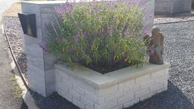 Mailbox Tile with Raised Brick Planter