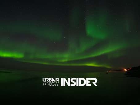 Insider Tips with Daniel Cook: Photographing the Aurora Borealis