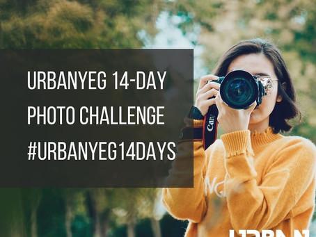 14 Day Photo Challenge: Recap