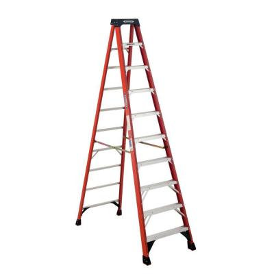 10' Ladder