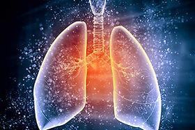 Lungs-iStock-178435901.jpg