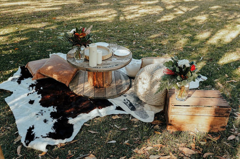 picnic set ups