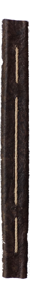 BOOK SPINE.png