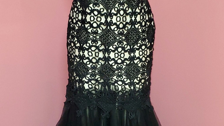 NWT Blush size 8