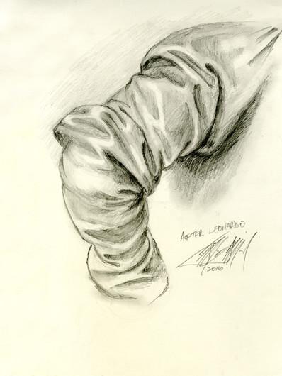 Leonardo Sleeve
