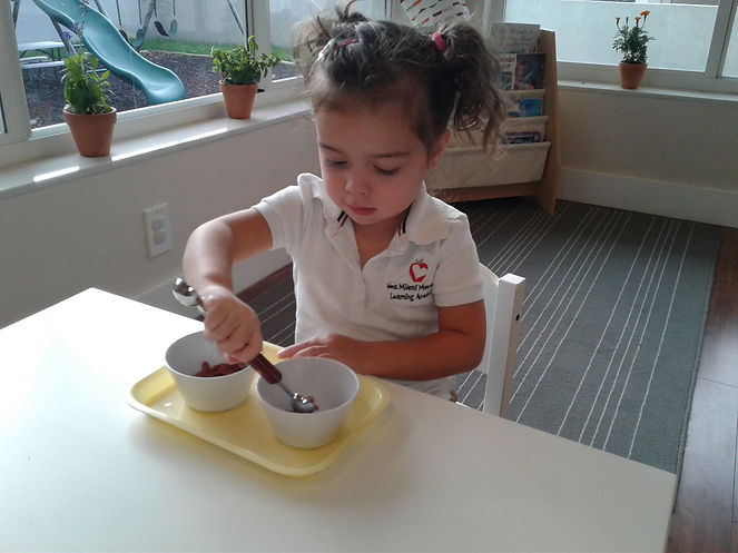 Montessori West Miami