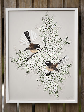 2 fantails original.jpg