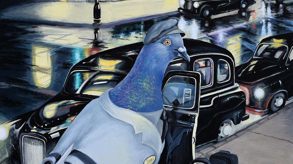 Pigeon Taxi Driver
