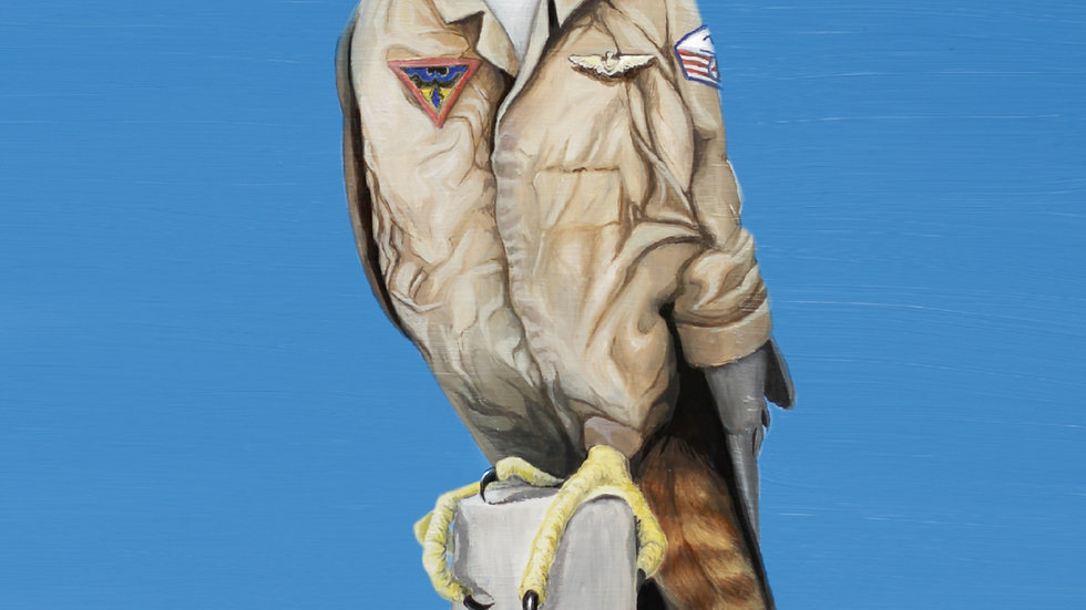 NZ Falcon Fighter Pilot