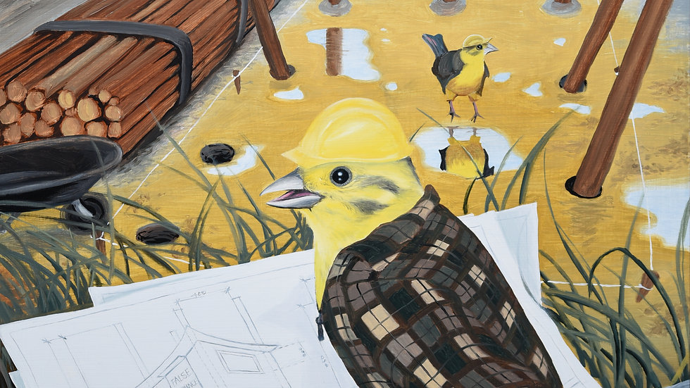 Yellowhammer Builder