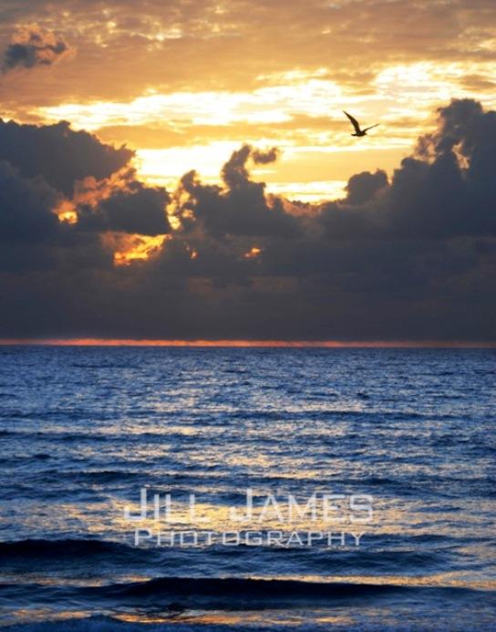 Gliding Thru Dawn