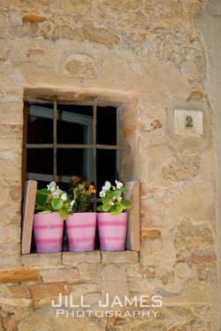 Flower Pots In The Window