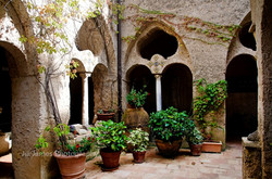 Potted Plants (H) - Ravello, Italy