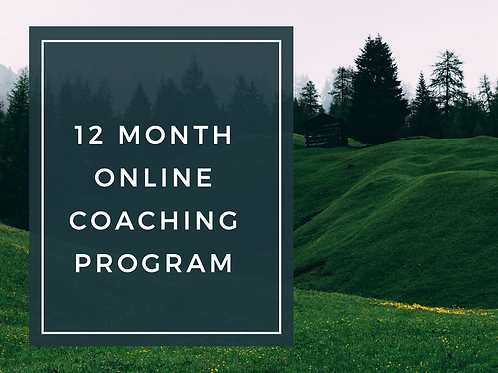 12 Month Online Coaching Program