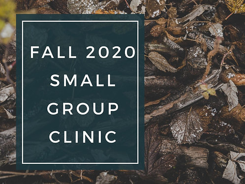 Fall Small Group Clinic
