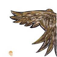 金色に染まる鳥