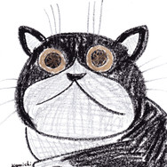 金色の目の猫