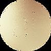 AI-emblem-solid.png