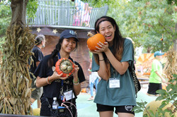 Pumpkinville Volunteering