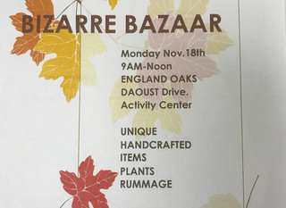 Bizarre Bazaar to Benefit Food Bank
