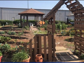 Come take a tour of our Demonstration Garden