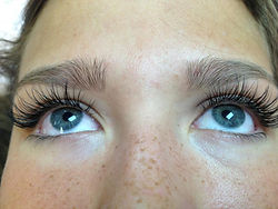 lash extentions, blink lash studio
