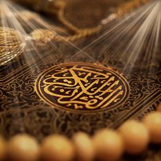 القرآن الكريم يشير إلى وجود كائنات نباتية في أراضين الكون الأخرى